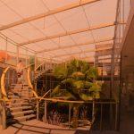 Šventoje - naujas gydomasis SPA centras