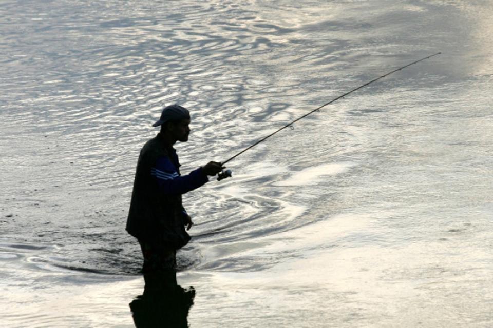 Sterkus galima žvejoti tik nuo birželio 1 dienos