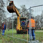 Medžiai Danės skvere šalinami teisėtai