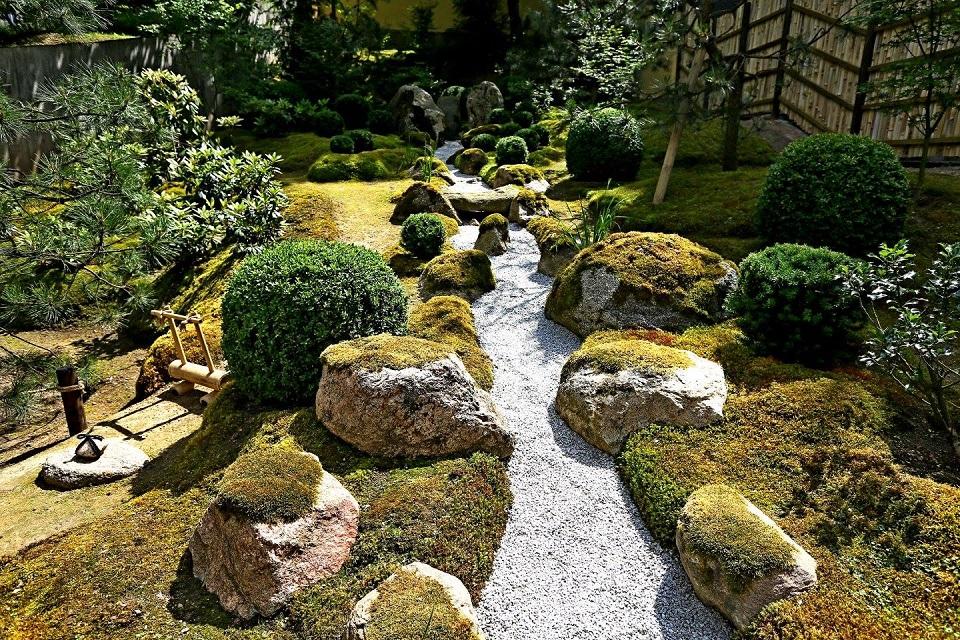 Gavę finansavimą, kurs japonišką sodą