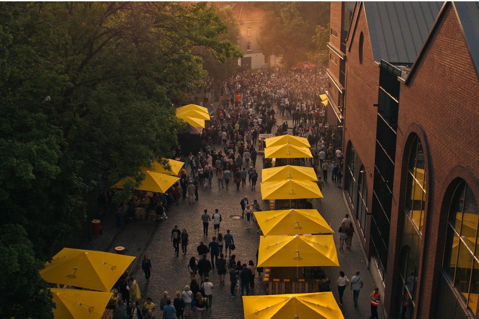 Aludarių festivalis vilios ne tik alumi