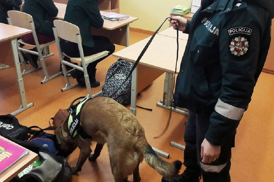 Šunys tikrino moksleivių kuprines