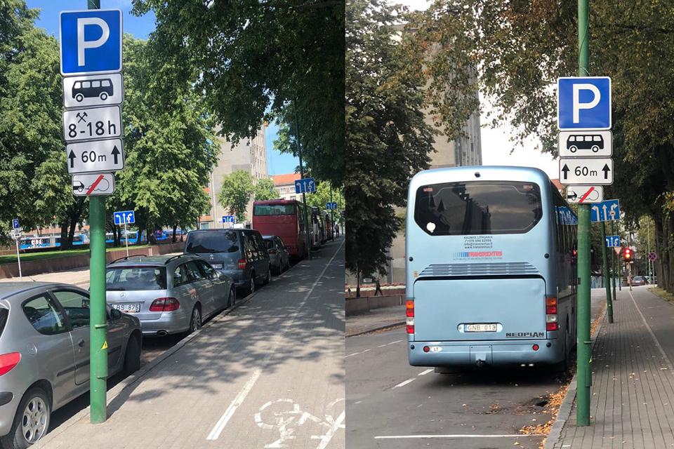 Danės gatvėje – ištisą parą autobusams skirta zona