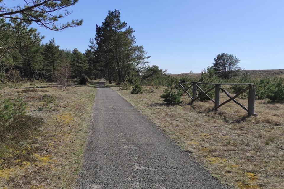Pradėjo rūpintis pėsčiųjų ir dviračių tako Neringoje rekonstrukcija