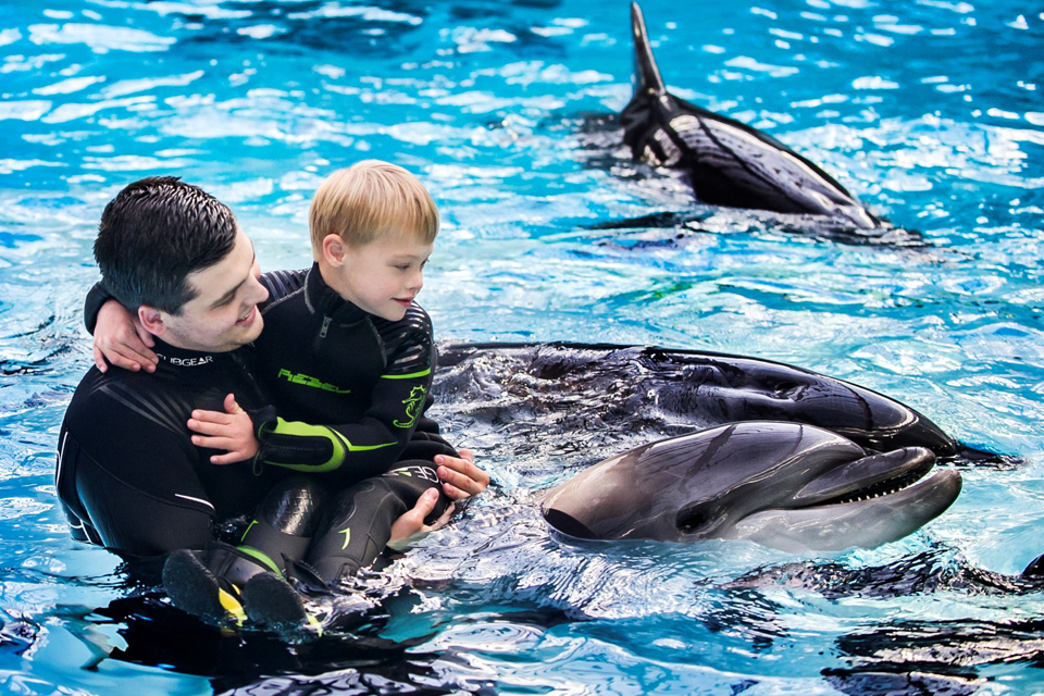Penkiolikai šeimų – nemokami delfinų terapijos užsiėmimai
