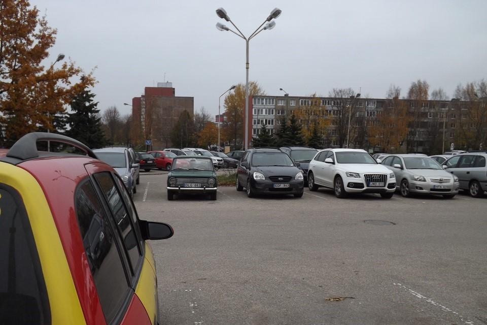 Sulaikytas automobilių vagis-nevykėlis