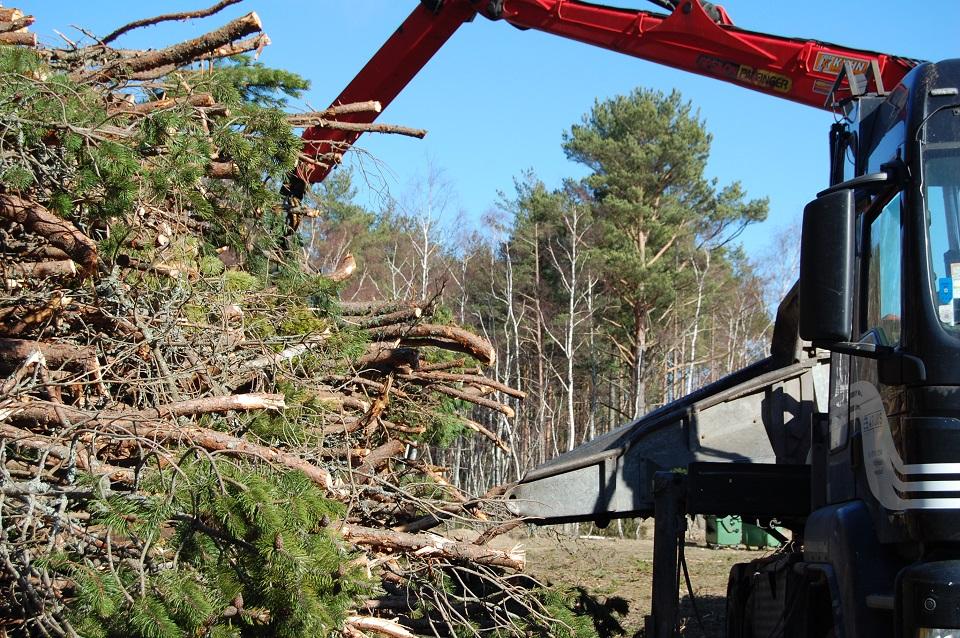 Už medieną susimokėti – iki sausio 15 d.