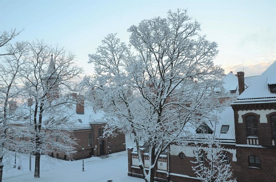 Olandijoje stiprins ryšius tarp universitetų