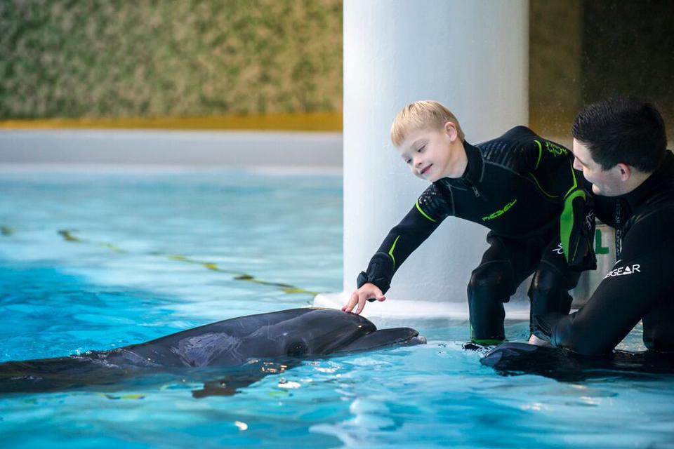 Jūrų muziejuje pradedama registracija gyvūnų terapijos gydymui