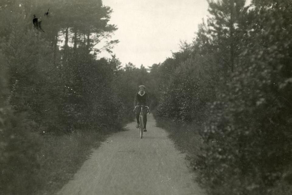 Apie dviratininkus – piktai ir neetiškai