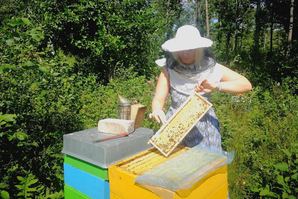 Po teismo posėdžių – pas bites