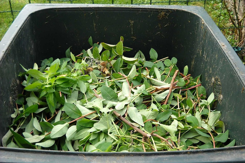 Kompostavimui – dar 4500 konteinerių