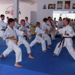 Pirmajame kiokušin karate seminare dalijosi patirtimi