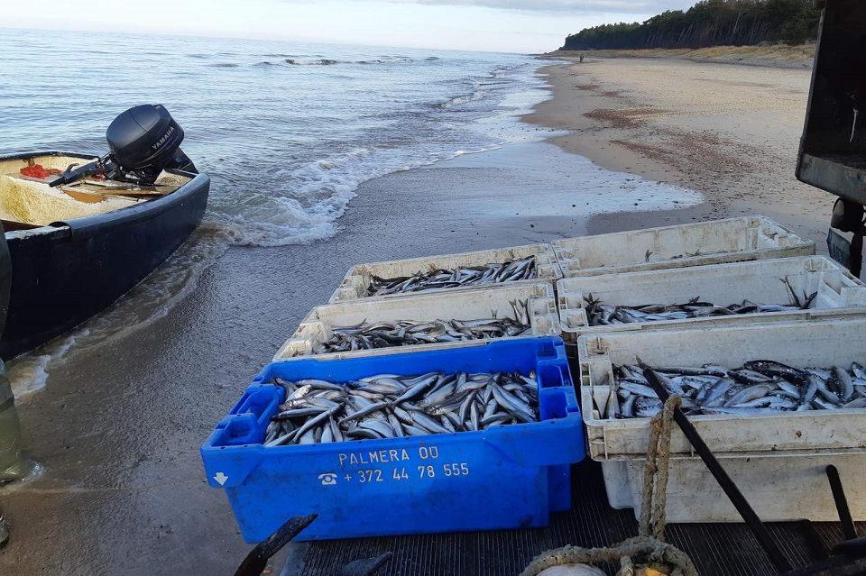 Jūros priekrantėje aptikta apie 300 metrų nelegalių žvejybos tinklų