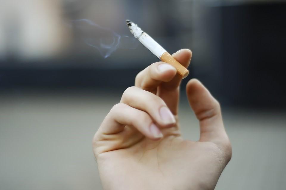 Rasta apie 9000 pakelių kontrabandinių cigarečių
