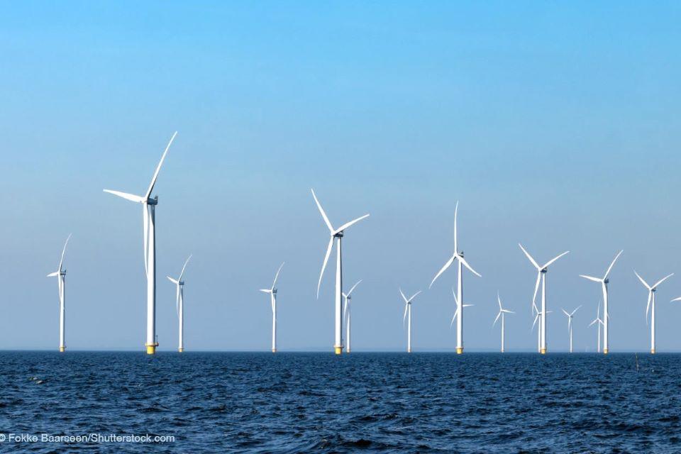 Балтика на пути к спасению: Литва будет бороться за уменьшение загрязнений, а рядом с Клайпедой хотят построить морской ветропарк