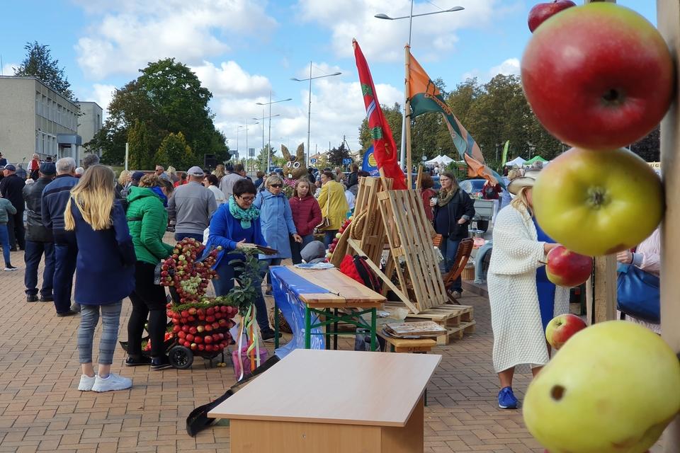 Obuolių šventėje – politiko benefisas
