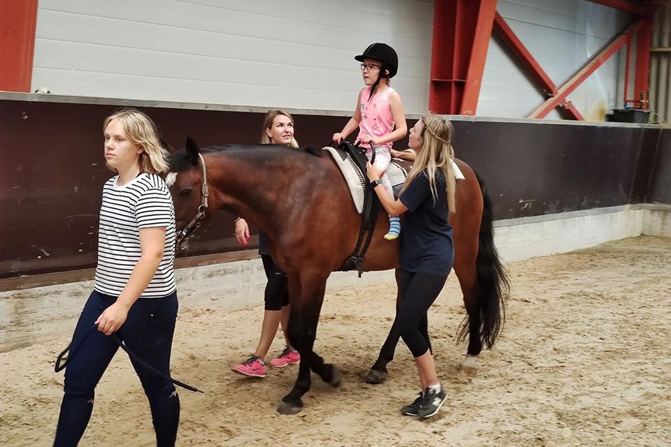 Klaipėdos universitetas ketina plėtoti žirgų terapiją