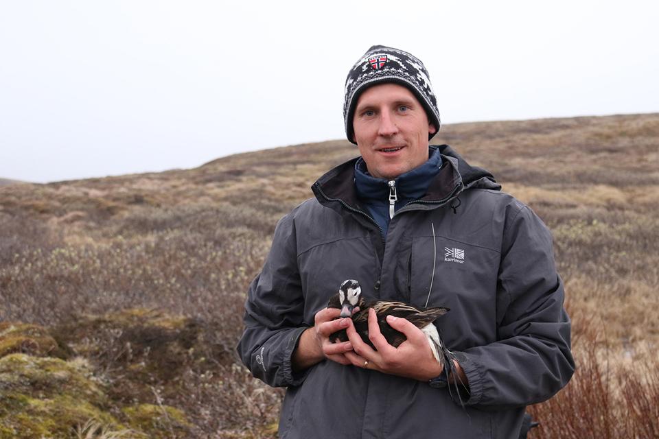 Arktyje vasarą leidęs mokslininkas susidūrė su itin nesvetingomis sąlygomis