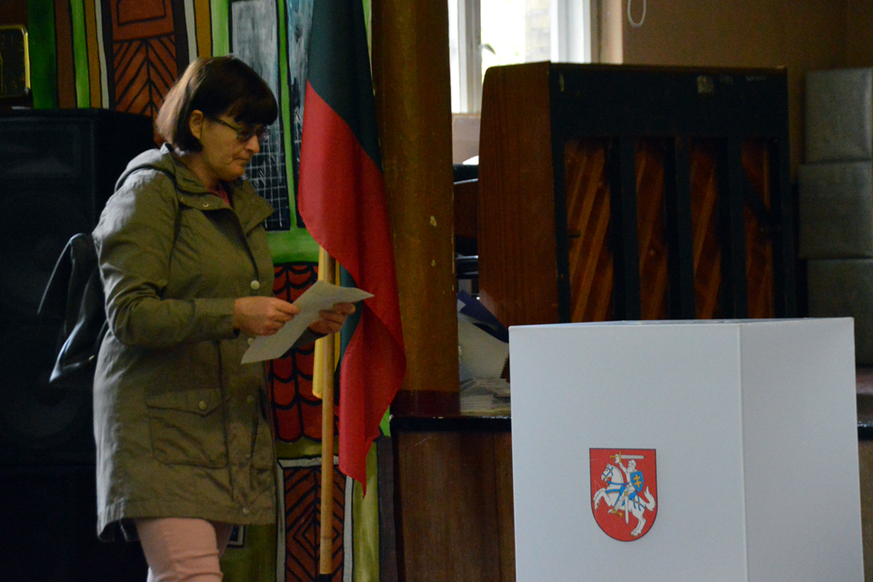 Klaipėdietis siūlo vieną vietą Seime skirti užsienio lietuviams