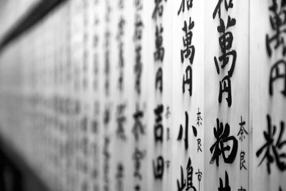 Biblioteka mokys kinų kalbos