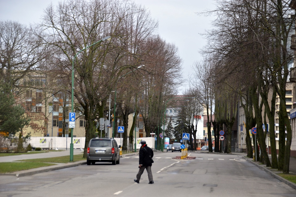S. Daukanto gatvės remonto projektui – pastabos (atnaujinta)