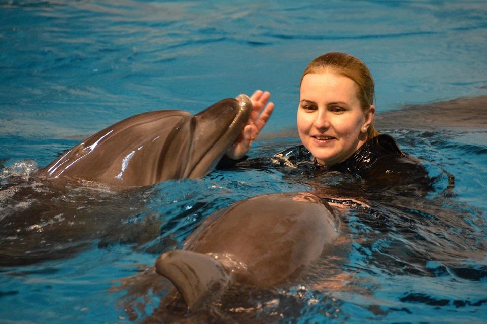 Nuo delfinų Klaipėdoje iki lamantinų Niurnberge
