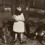 Metinis mokestis už šunį - iki 530 eurų