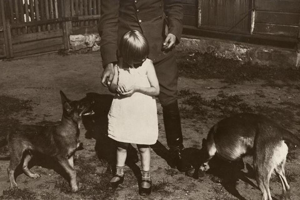 Metinis mokestis už šunį – iki 530 eurų