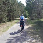 Neringoje vagiami dviračiai