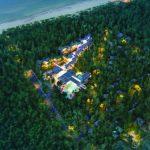 В Гируляйском сосновом лесу — дома отдыха