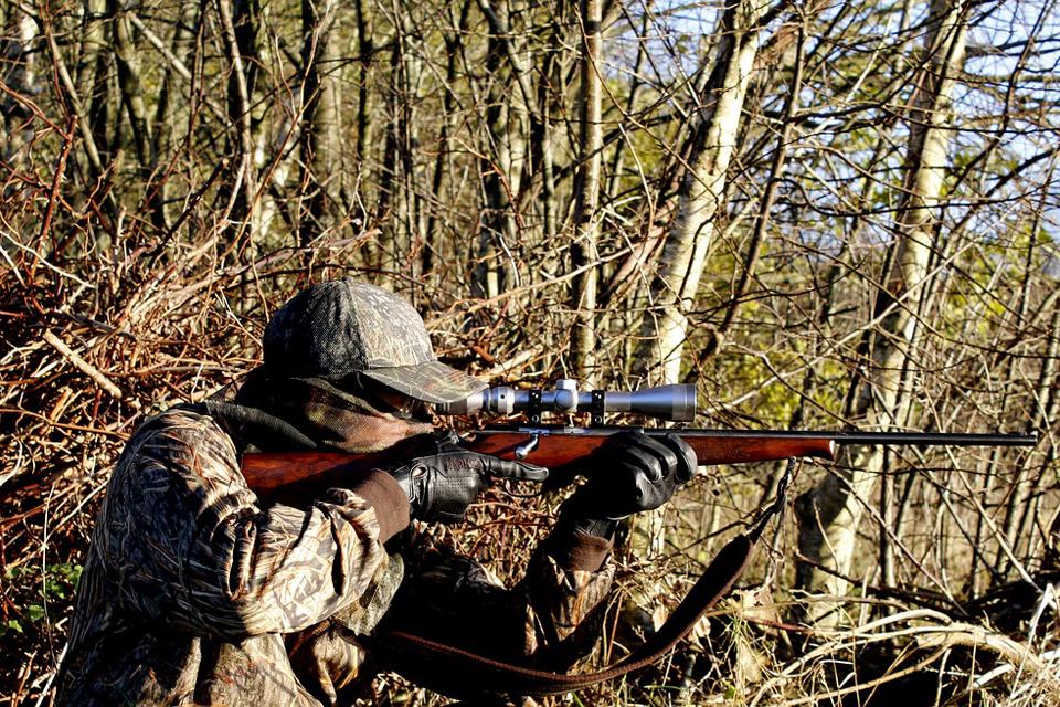 Siūlo viešinti medžioklių dalyvių sąrašus