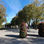 Miesto centre – istorinės Klaipėdos biržos ženklas