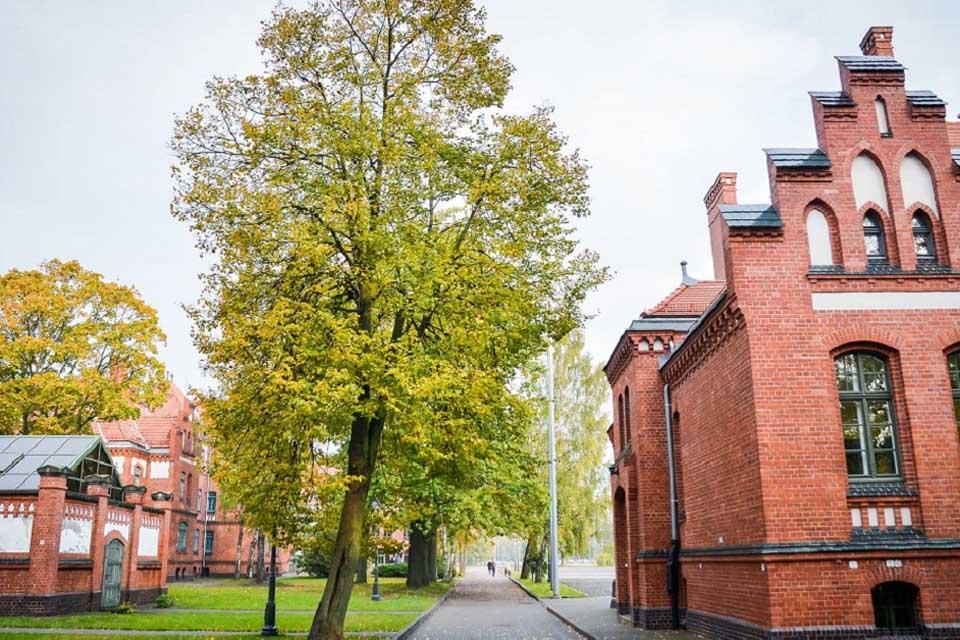 Klaipėdos universiteto kreipimasis į Seimą ir Vyriausybę