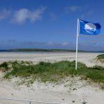 Politikų siūlymas: Mėlynąją vėliavą iškeisti į tualetus