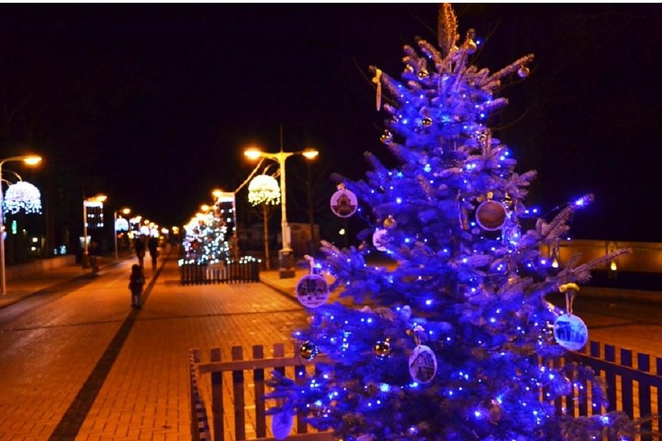 Per Kalėdas Palanga kvepės meduoliais