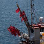 Nori atnaujinti žvejybos taisykles