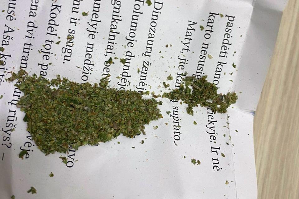 Sulaikė šešis galimai narkotinių medžiagų turėjusius asmenis