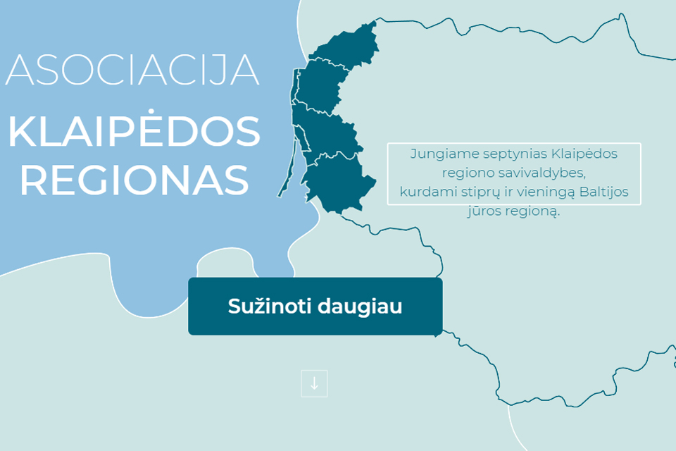 """Klaipėdos regione"" liks tik direktorė?"