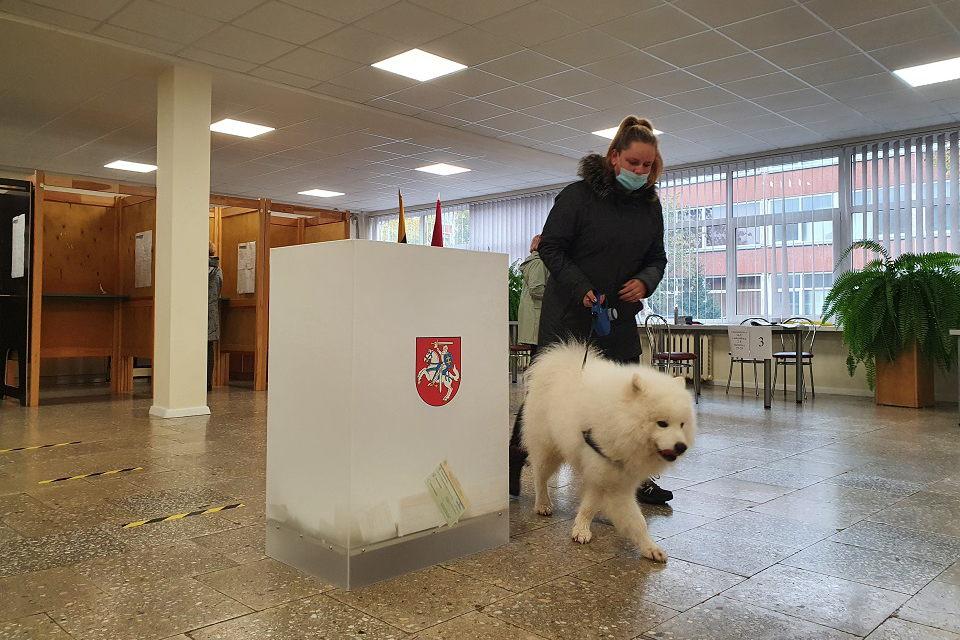 Ar verta skubėti atverti rinkimų apylinkių ar Seimo duris labai jauniems žmonėms?