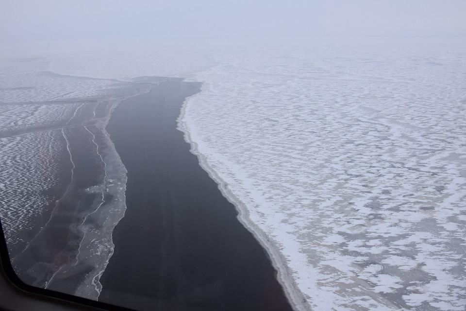 Lipti ant Kuršių marių ledo – pavojinga