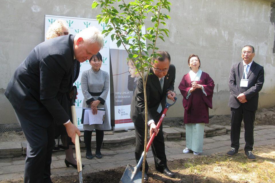 Japoniško sodo pradžią palaimino japonai