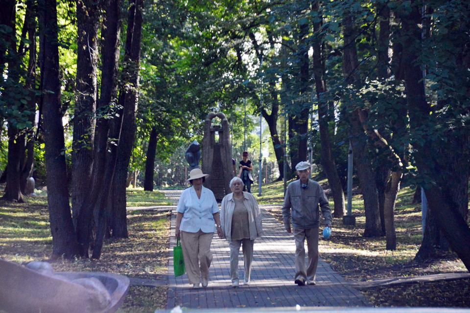 Nauja Skulptūrų parko vizija: 500 medžių – per didelė auka?