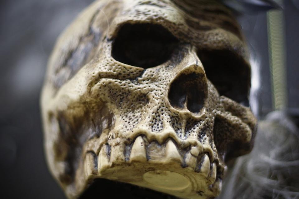 Rado, įtariama, latvės kaulus