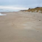 Kviečia į talką prie jūros rinkti teršalų