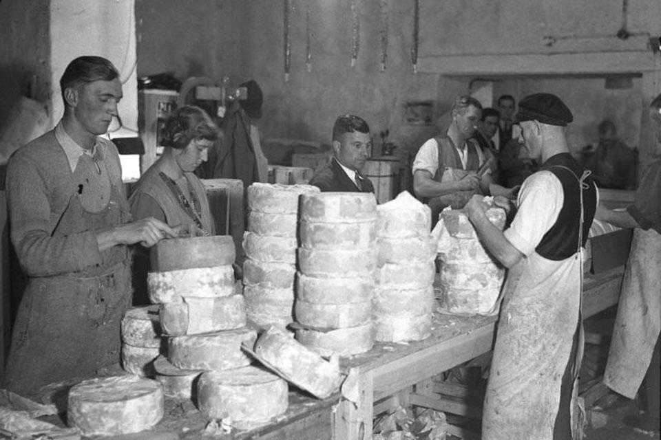 Tilžės sūrio istorija