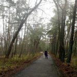 Atnaujins Nidos dviračių ir pėsčiųjų taką
