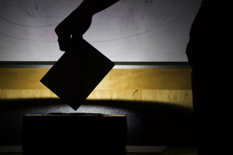 """Nerimas prieš rinkimus arba """"Facebook"""" davatkos"""