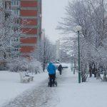 Klaipėda pasitinka žiemą: laikinos gatvių valymo sutartys ir atakai pasirengęs gripas